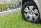 Мосгордума поддержала инициативу увеличить размер штрафа за парковку на газонах